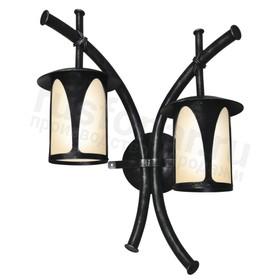 Уличный настенный светильник с 2 лампами Борнео 160-13/bg-02